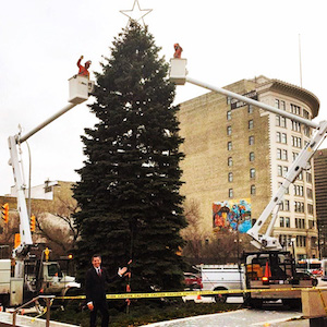 Winnipeg Christmas Tree