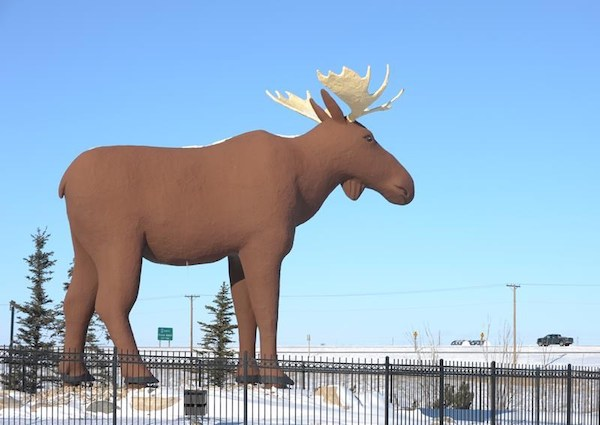 Mac - Moose Jaw