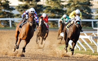 Purrsistent is Persistent, But Hidden Grace Wins Second Straight
