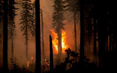 Canadians Fighting California Fires Getting Relief Crews, But Some Headed to Oregon