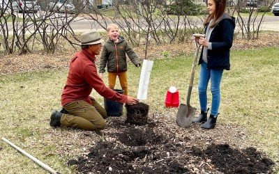 Mission to Plant 1 Million Trees in Winnipeg Underway