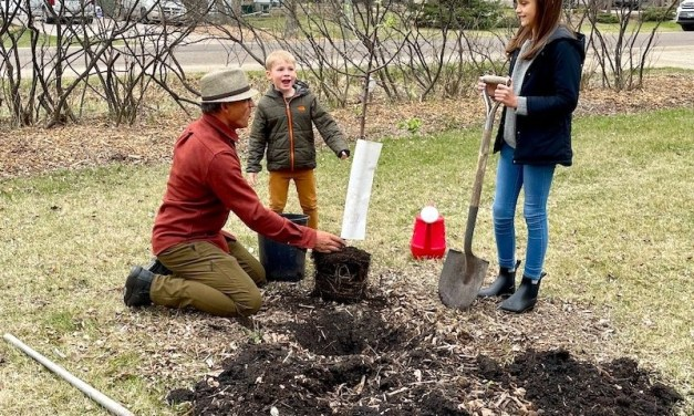Mission to Plant 1 Million Trees in Winnipeg Underway