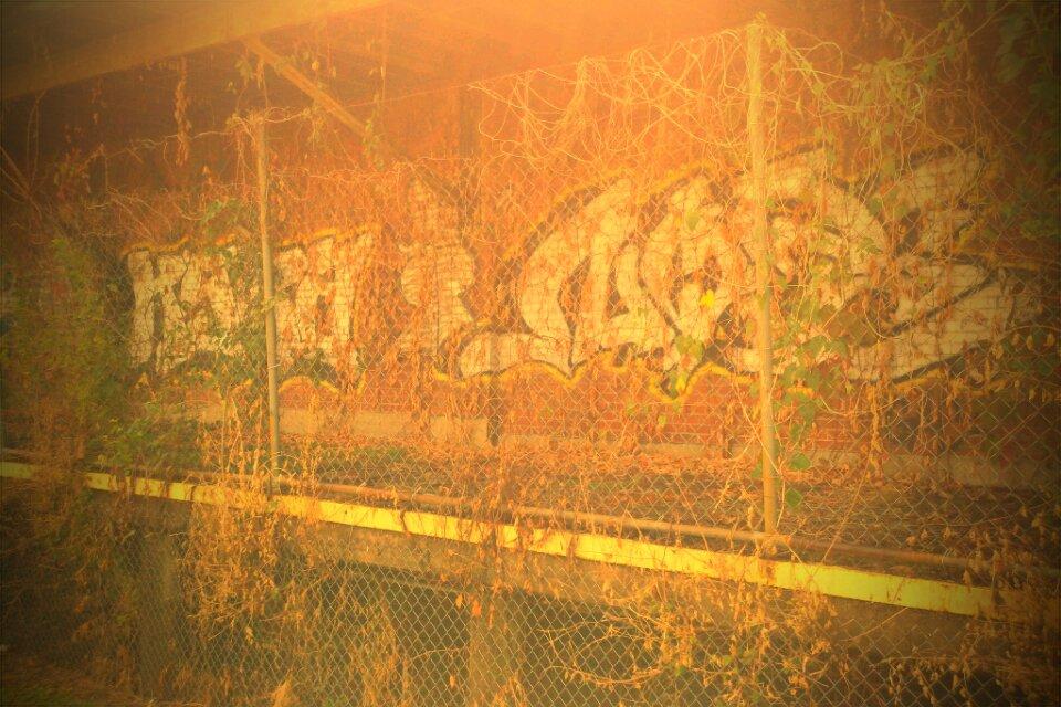 Graffiti Nashville