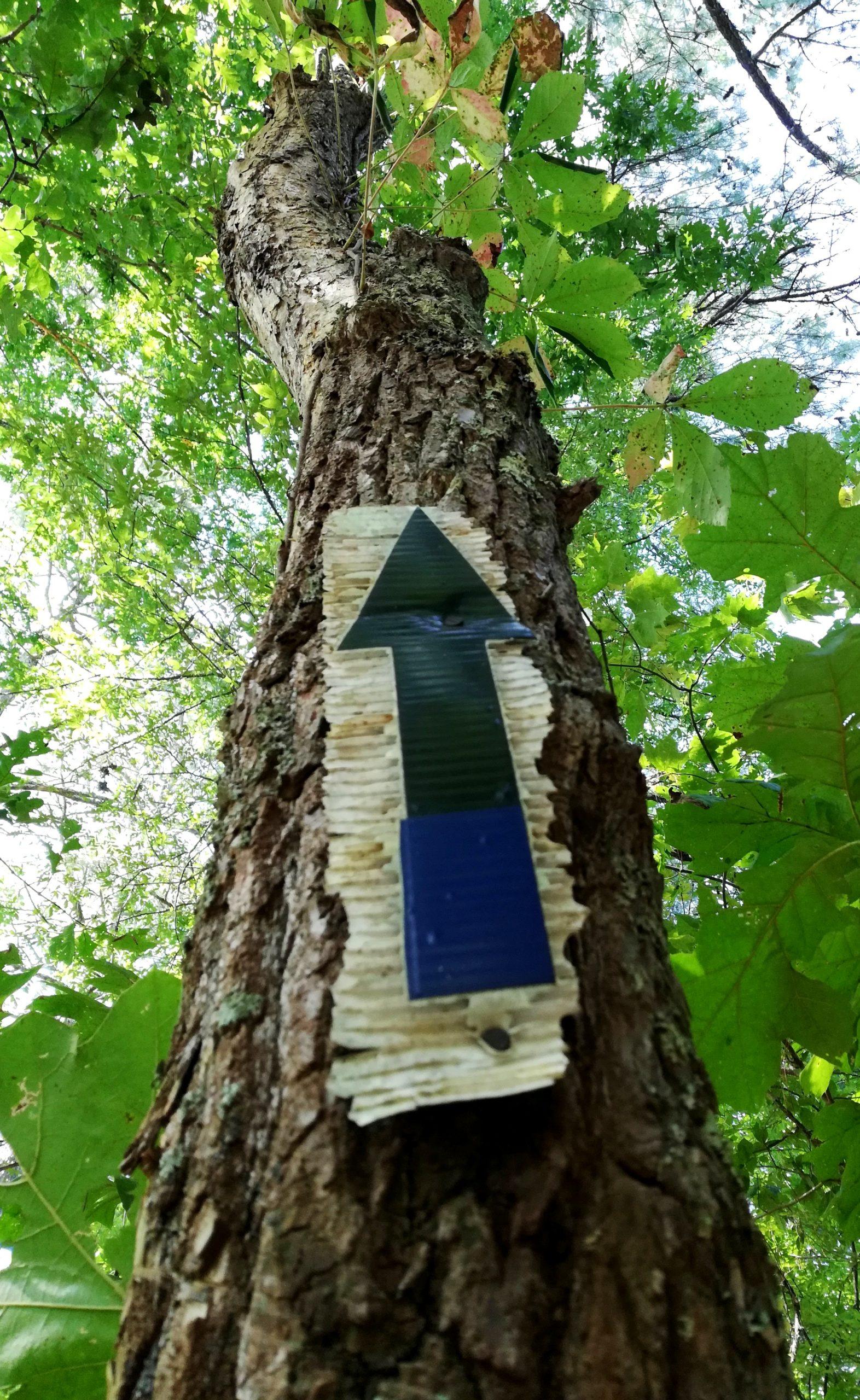 Bowie Nature Park Fairview Photos