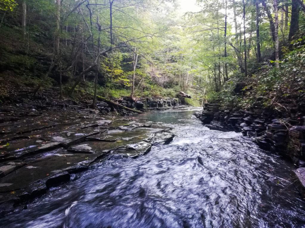 Laurel Bluff Loop Trail