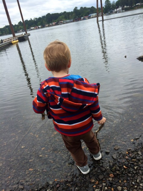 Jakey on a stretch of river at Willamette Park.