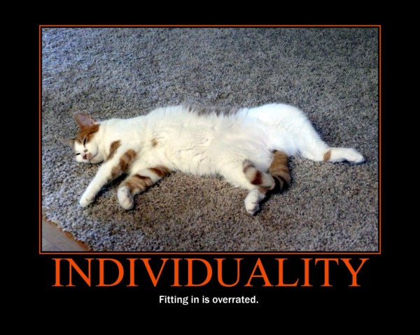 Motivational Poster Individuality