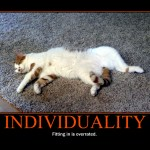 Motivational Poster: INDIVIDUALITY