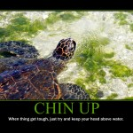 Motivational Poster: CHIN UP