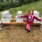 I've Got Bees!