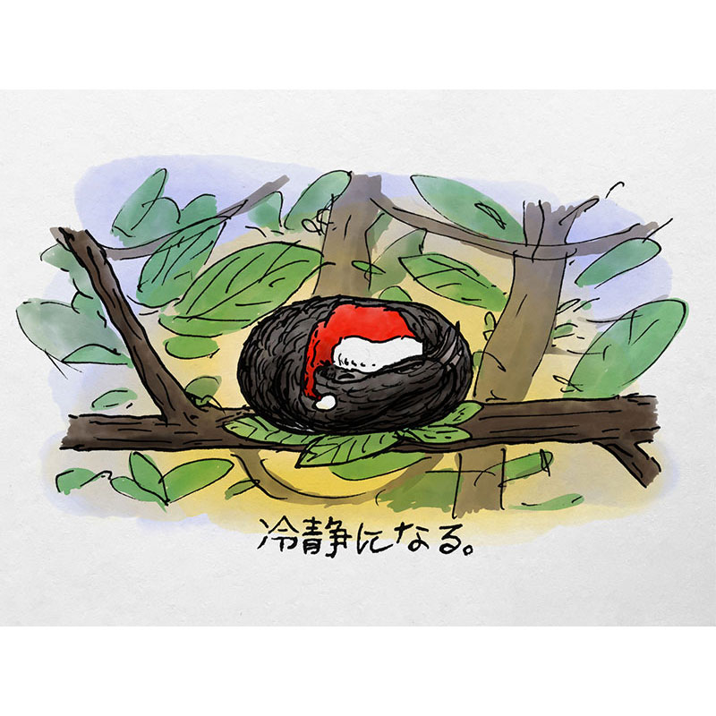 Sloth Sleeping