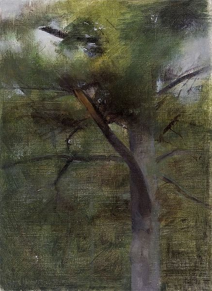 Christopher Gallego, American, b. 1959, White Pine with Broken Branch, 2007, Oil painting on canvas mounted to board, 12 1/4 x 9 in.
