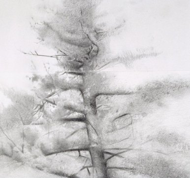 Study for Big Pine, detail