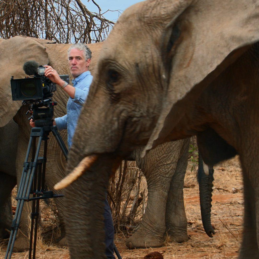 Portfolio Grabs Elephant Family and Me Still003