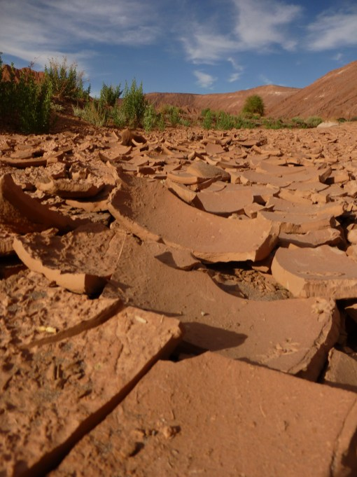 Baked dry mud in a valley outside San Pedro de Atacama