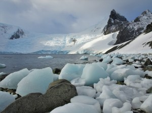 Icebergs washed up in Orne harbour
