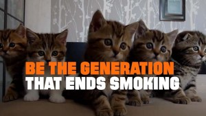 #CATmageddon – Smokers Kill Their Pets (New Truth Campaign)