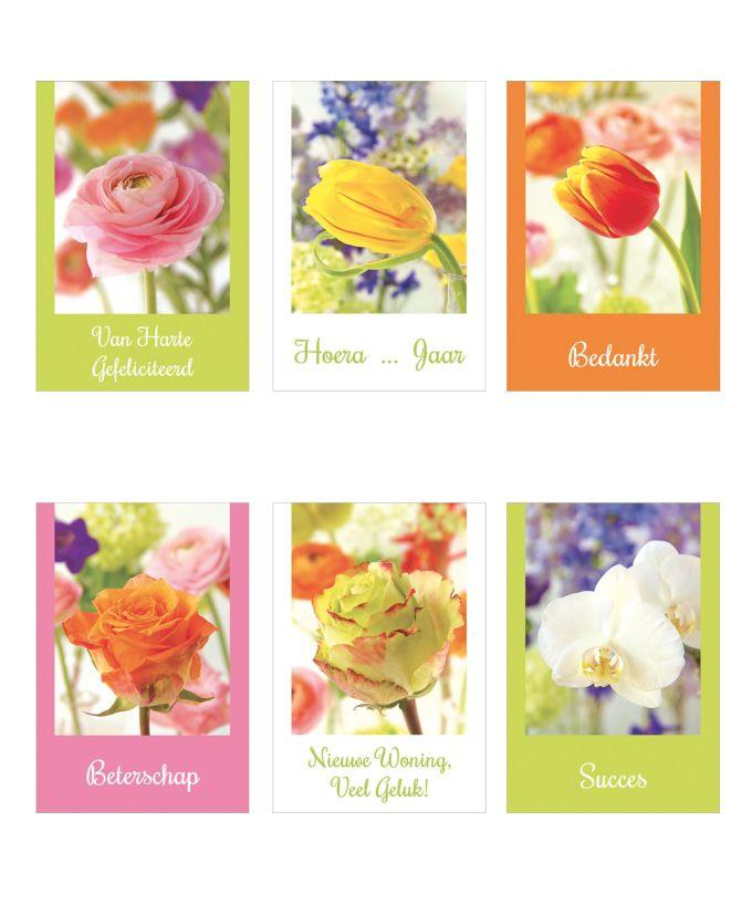 Fleur & Couleur - Bloemenkaartjes