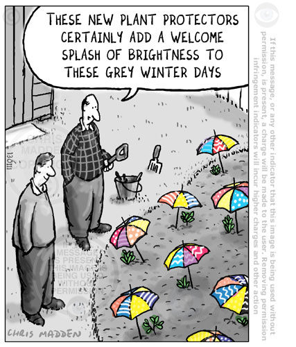 umbrellas as plant protectors cartoon