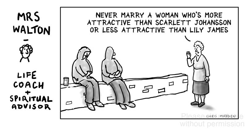 Marriage advice cartoon