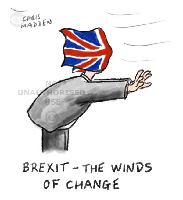 Brexit cartoon Union flag in person's face