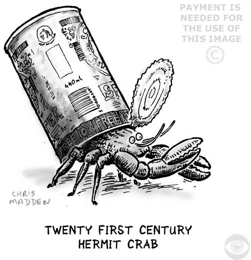 Hermit crab using a tin can as a shell - cartoon