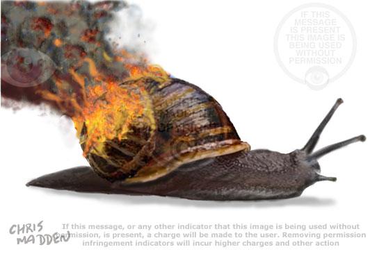 snail on fire