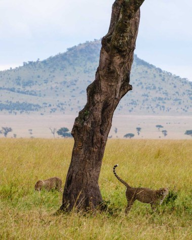 2012.06.15 Tanzania (1)