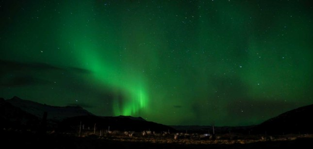 A display of the Aurora Borealis or Northern Lights in Iceland