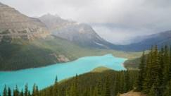 2016.09.17 Canada - Banff National Park (17) Peyto Lake