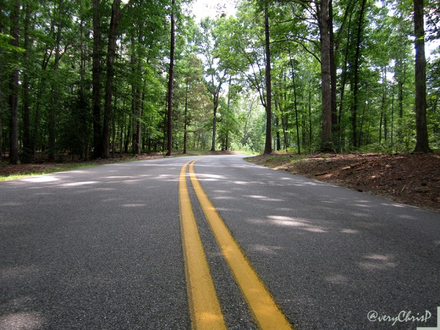 State Park Road cuts through the park.