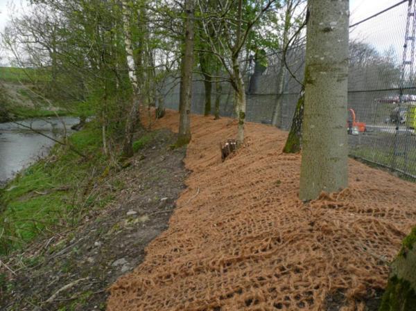 riverbank stabilisation landscape