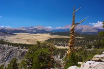 Sierra Nevada Travel And Chris Roams