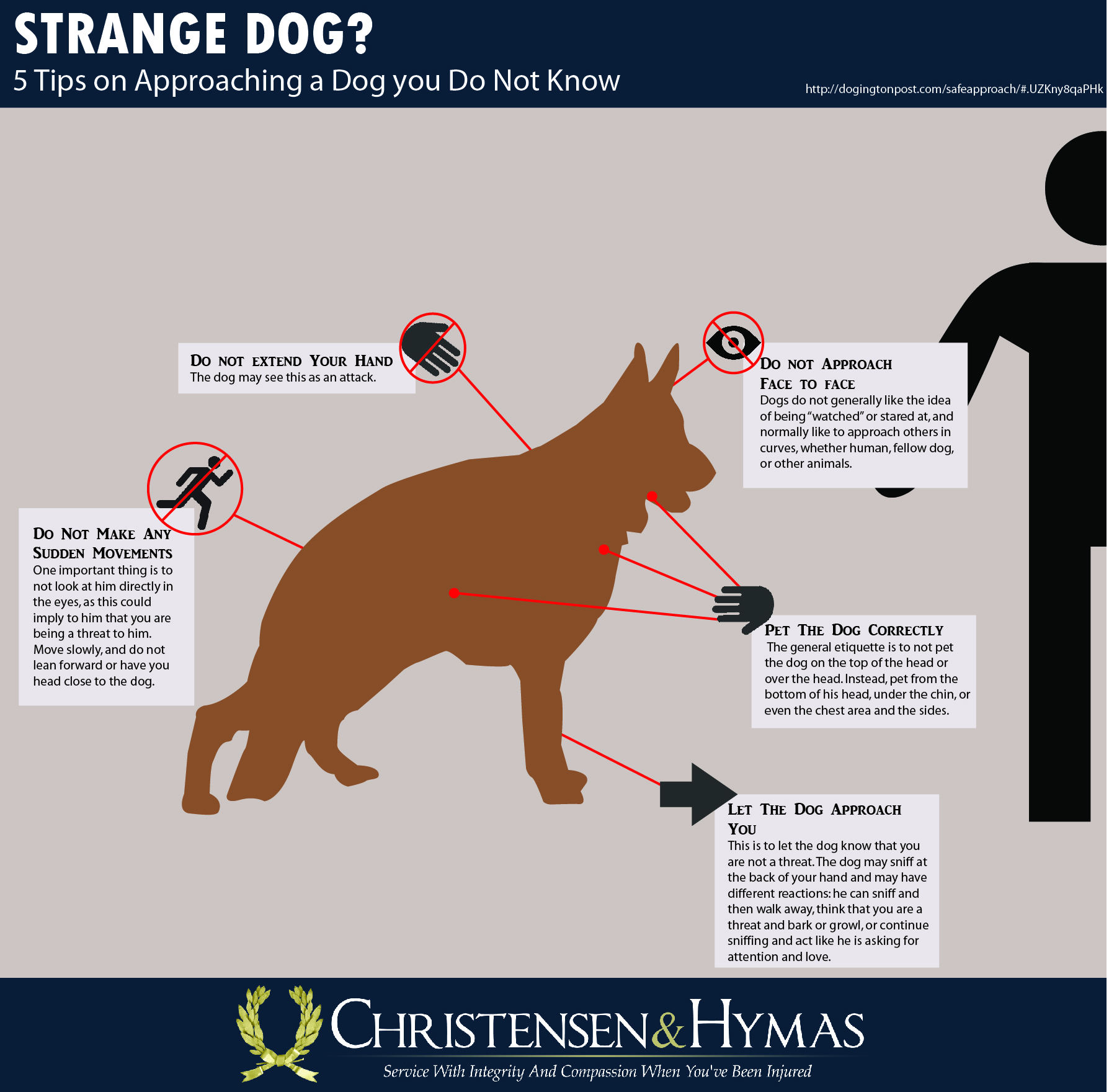 5 Tips on how to Approach a Strange Dog | Utah Personal Injury Law