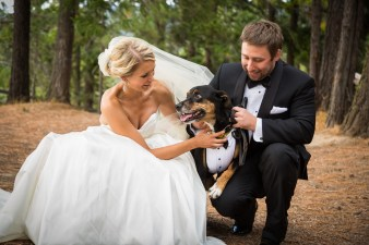 wedding-videographer-019