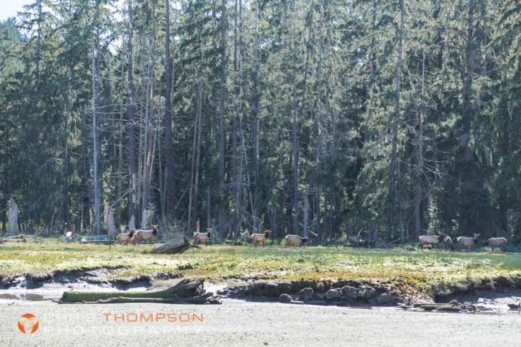 spokane-photographers-chris-thompson-54