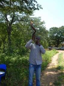 Pastor Karabo announces the arrival of the Cross