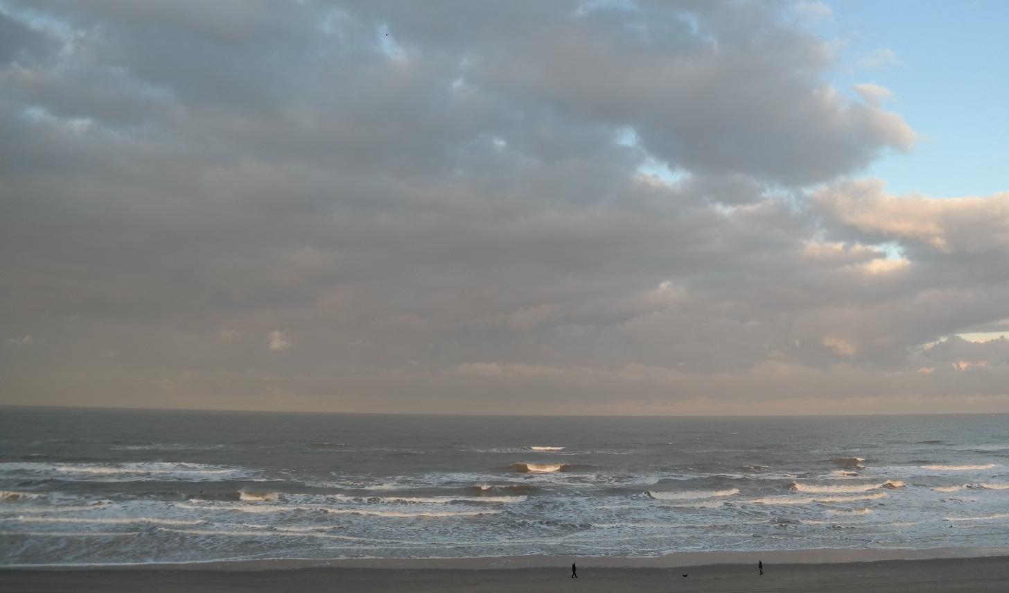 Resultado de imagen de paca aguirre y el mar