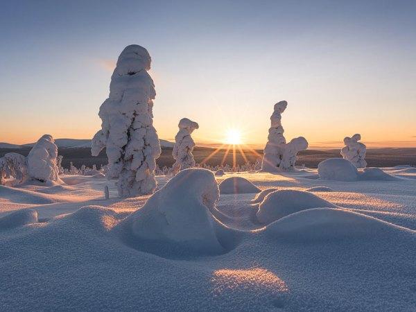 Winterlandschaft in Finnisch-Lappland