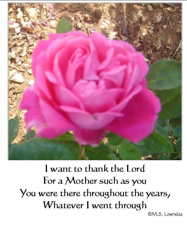 picture regarding Free Printable Cards for All Occasions named Printable Christian Postcards