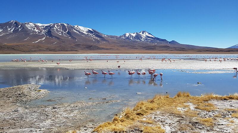 Rotta verso il deserto di sale di Uyuni (2 giorno), giorno 27