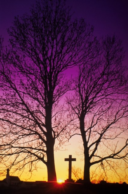 @Glowimages: Cemetary Cross