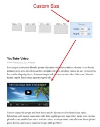 Custom Youtube Video Embed
