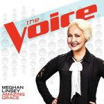 Meghan Linsey Cover Photo