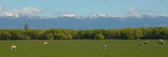 Aotearoa Mountain Landscape