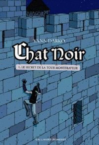 Chat noir, Tome 1