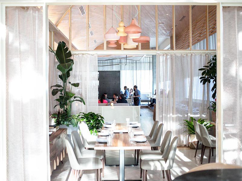 Lined with wood floors and floor-to-ceiling windows, a sense of space pervades at ATX Cocina, in part due to its arched ceiling in hemlock and pine.