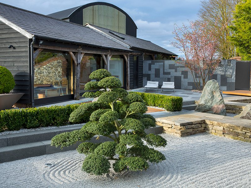 Cloud-pruned Japanese holly sits in raked gravel in this contemporary Zen garden.