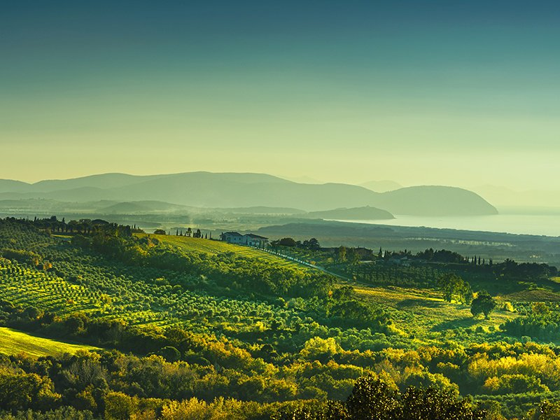 The Tyrrhenian Sea offers a temperate climate to the coastal region of Maremma in Tuscany. Photograph: Getty.