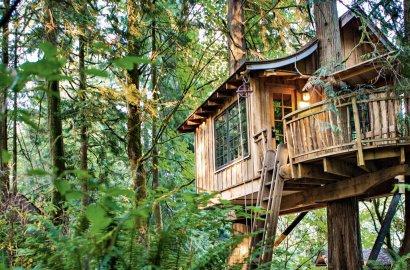 Treetop Living: Innovative Treehouse Designs